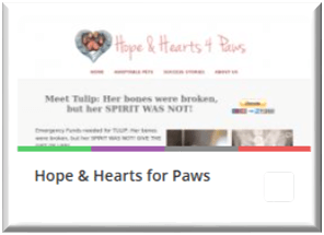 Hope & Hearts for Paws